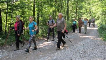 Šetači uživali u kastavskim šumskim ljepoticama