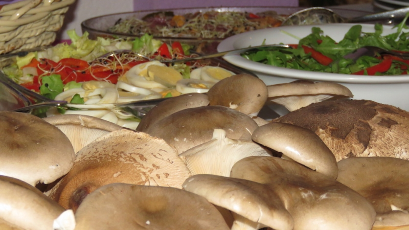 Gljive naše grobničke