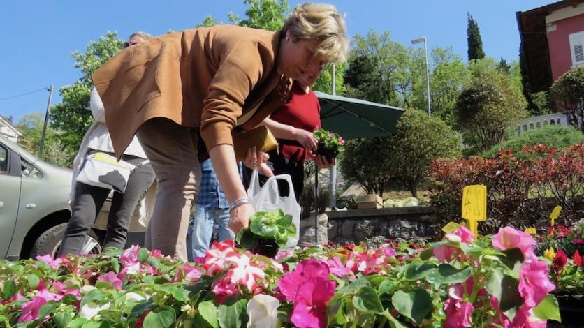 Jesenski Sajam cvijeća sutra u Kostreni