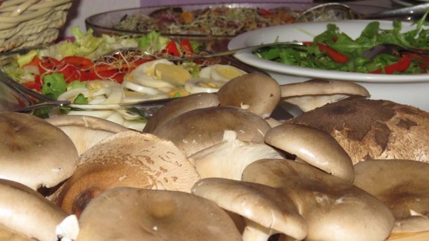 9. Gljive naše grobničke u Domu kulture Čavle