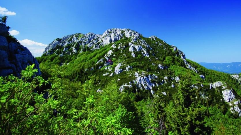 Nacionalni park Risnjak slavi rođendan i časti posjetitelje