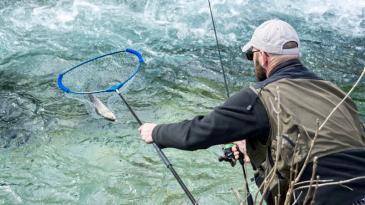 Pedesetak sportskih ribolovaca okupilo se uz Rječinu