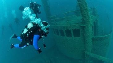 More kraj Krka skriva atraktivnu olupinu broda Peltastis