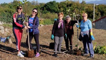 115 novih stabala od danas raste na kastavskom području