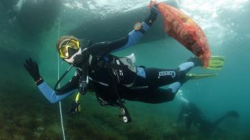 Aktivno na površini mora, ali i u kostrenskom podmorju