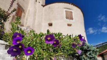 Turistička zajednica Grada Bakra poklanja sadnice cvijeća